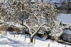 Lengenbeck im Winter 15