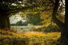 naturfenster-035