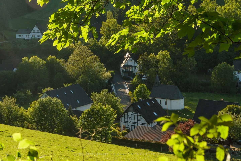 sallinghausen-16
