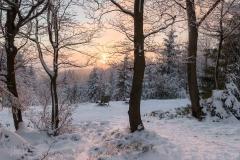 Abendstimmung-Astenheide-Winter-08