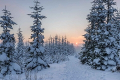 Abendstimmung-Astenheide-Winter-09