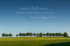 Betrachte die Welt voller Ruhe...