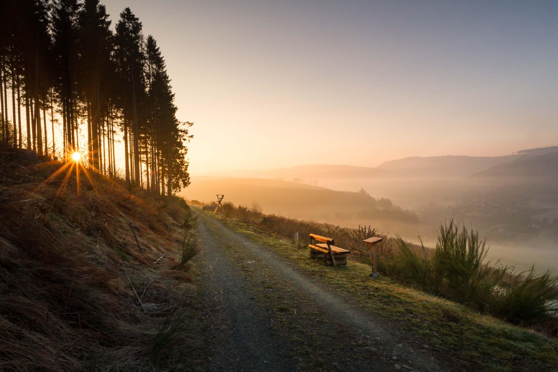 Westfeld im Morgendunst