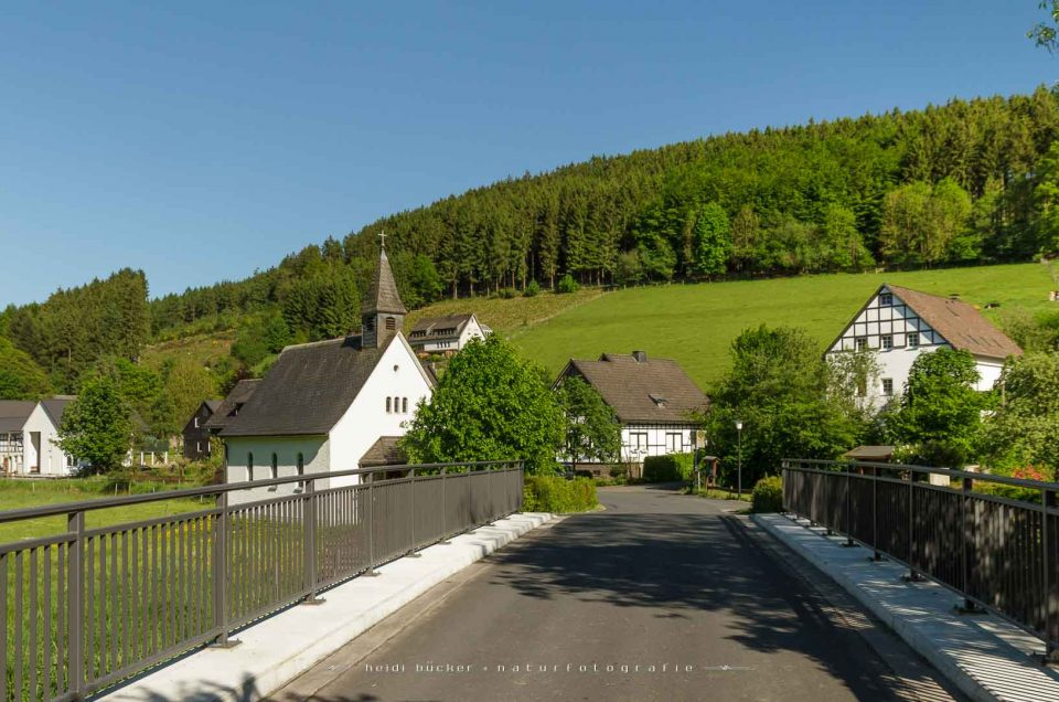 Sallinghausen