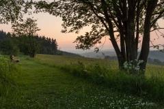 Abendstimmung in Altastenberg