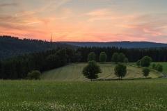 Abendstimmung am Herhagen in Nordenau