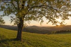 Abendliche Aussicht vom Sommerseitenweg 2