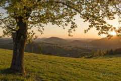 Abendliche Aussicht vom Sommerseitenweg 1