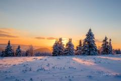 Winter in der Astenheide1