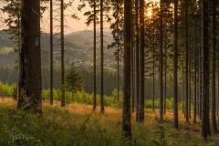 Sonnenuntergang am Hömberg 6