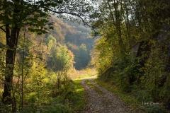 Weg ins Mühlental 1