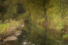 Wassergraben bei Alme 2
