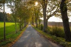 Almer Rundwanderweg Al1 - 5