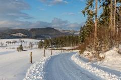 Schmallenberg-Almert im Winter 3