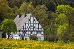 Almert-im-Fruehjahr-2021-07