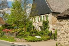 Sundern-Altenhellefeld-Fruehjahr-13