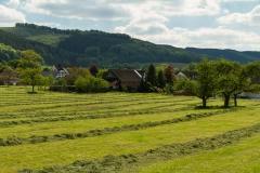 Sundern-Altenhellefeld-Fruehjahr-23