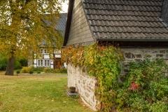 Sundern-Altenhellefeld-Herbst-09