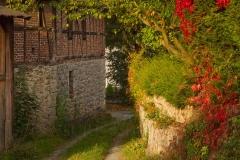 Sundern-Altenhellefeld-Herbst-11