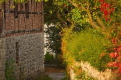 Sundern-Altenhellefeld-Herbst-12