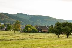 Sundern-Altenhellefeld-Herbst-16