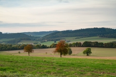 Sundern-Altenhellefeld-Herbst-17