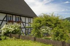 Rosengarten im Rosendorf Assinghausen