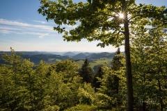 Aussicht-Knochenspitze_2021-07