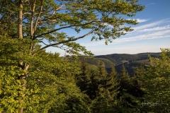 Aussicht-Knochenspitze_2021-09