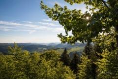 Aussicht-Knochenspitze_2021-10