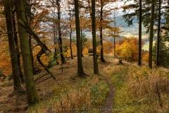 Hoher-Knochen-Herbst-21