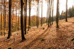 Hoher-Knochen-Herbst-23