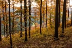 Hoher-Knochen-Herbst-26