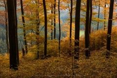Hoher-Knochen-Herbst-27