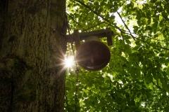 Glocke bei der Buchhagen-Kapelle