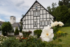 Bad-Fredeburg-im-Sommer-34