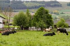 Eslohe-Beisinghausen-04