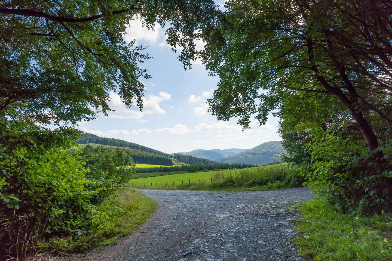 Weg zum Bergsee