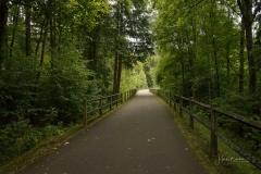 Radweg am Biggesee 2