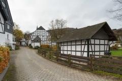 Boedefeld-Herbst-10