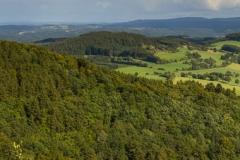 Bollerberg-Panorama 1