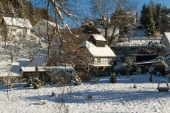 Coppenrode-Winter-02