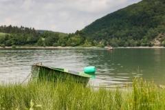 Diemelsee-Fruehsommer-06