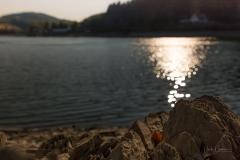 Diemelsee-Sommer-05