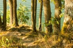 Diemelsee-Sommer-15