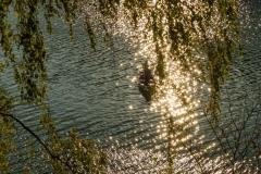 Diemelsee-Sommer-20