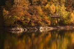 Diemelsee-im-Herbst-11