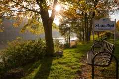 Diemelsee-im-Herbst-23