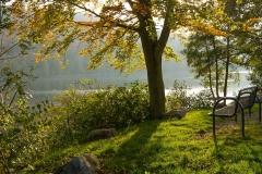 Diemelsee-im-Herbst-24