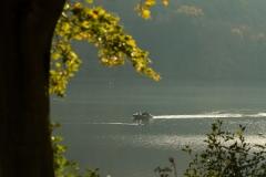 Diemelsee-im-Herbst-25